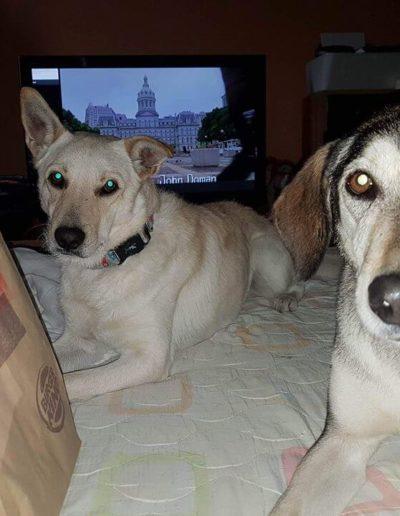Kokusz és Lara